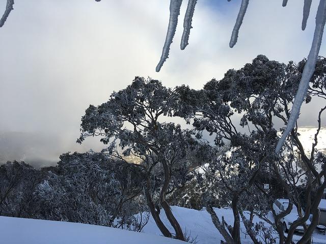 pogoda w Australii, zima w Sydney, zima w Melbourne, lato w Australii, lato w Sydney, lato w Melbourne