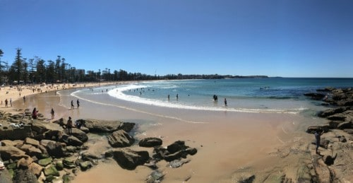 Manly beach spacerem do shelly beach