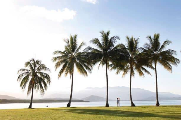 palmy-morze-miesiac-miodowy