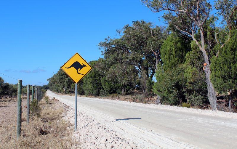 przepisy drogowe Australia