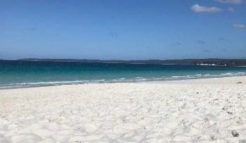 wycieczka poza Sydney Jervis Bay